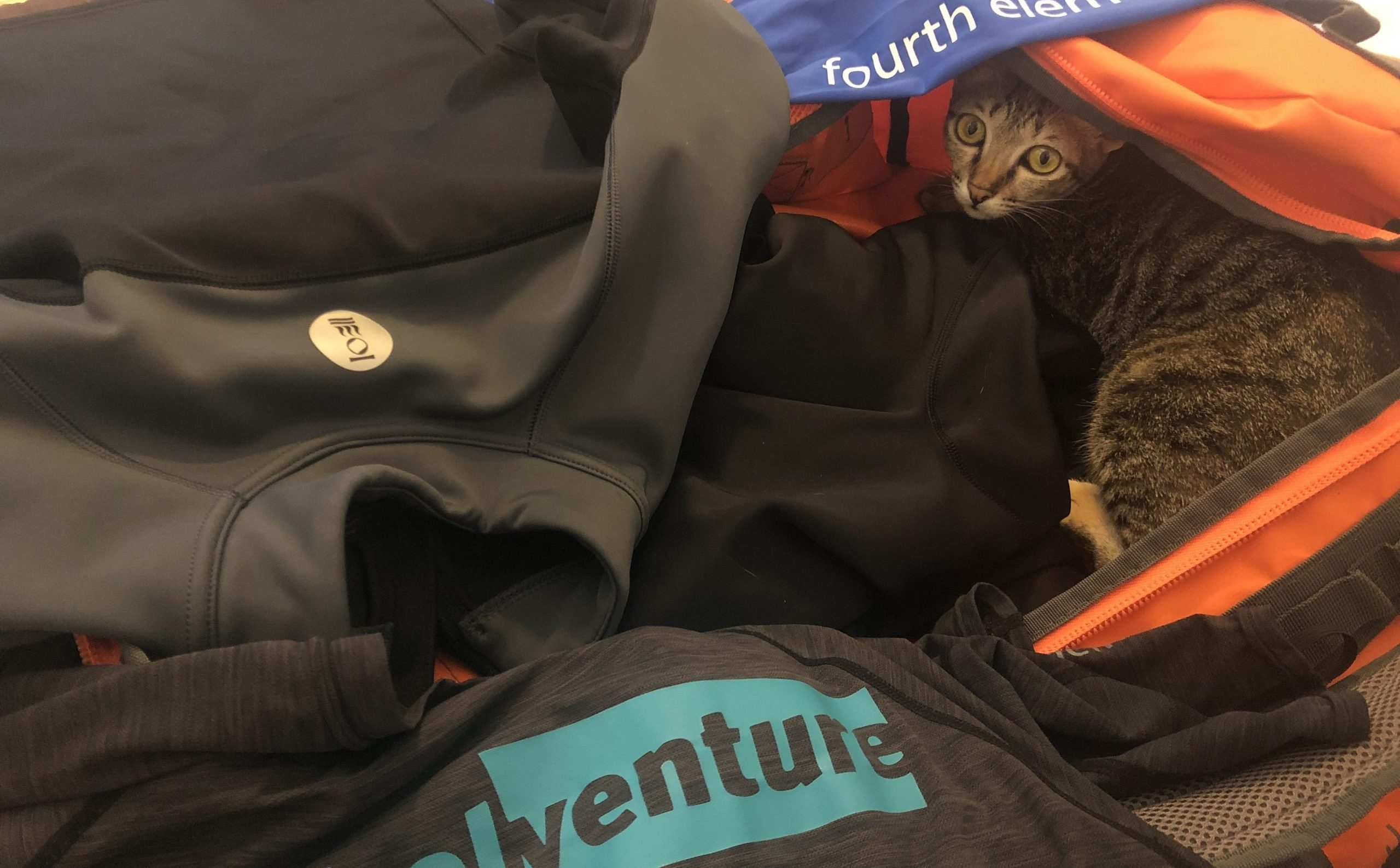 snorkeling gear being packed with cat in the bag