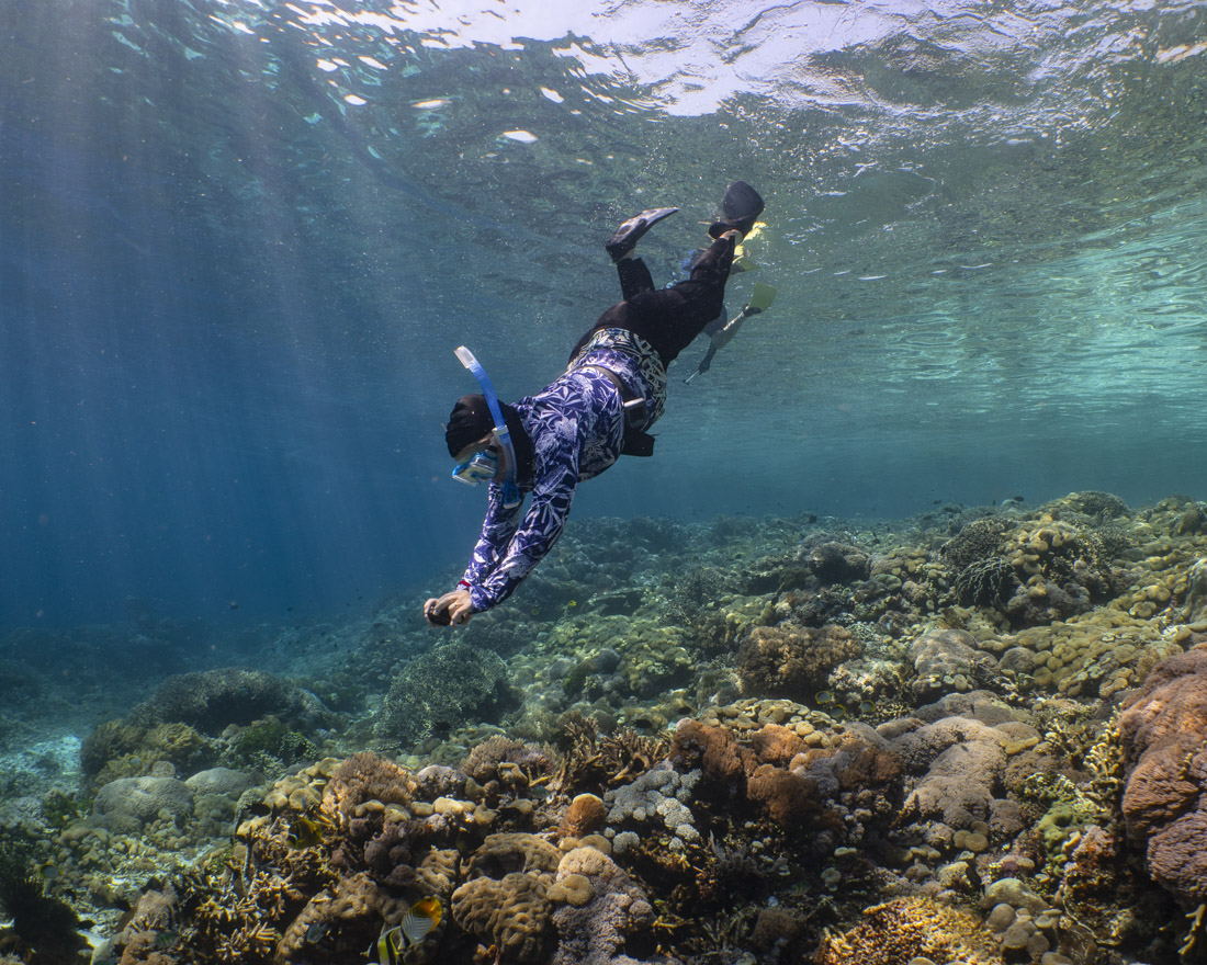 snorkeler diving down to photograph reef