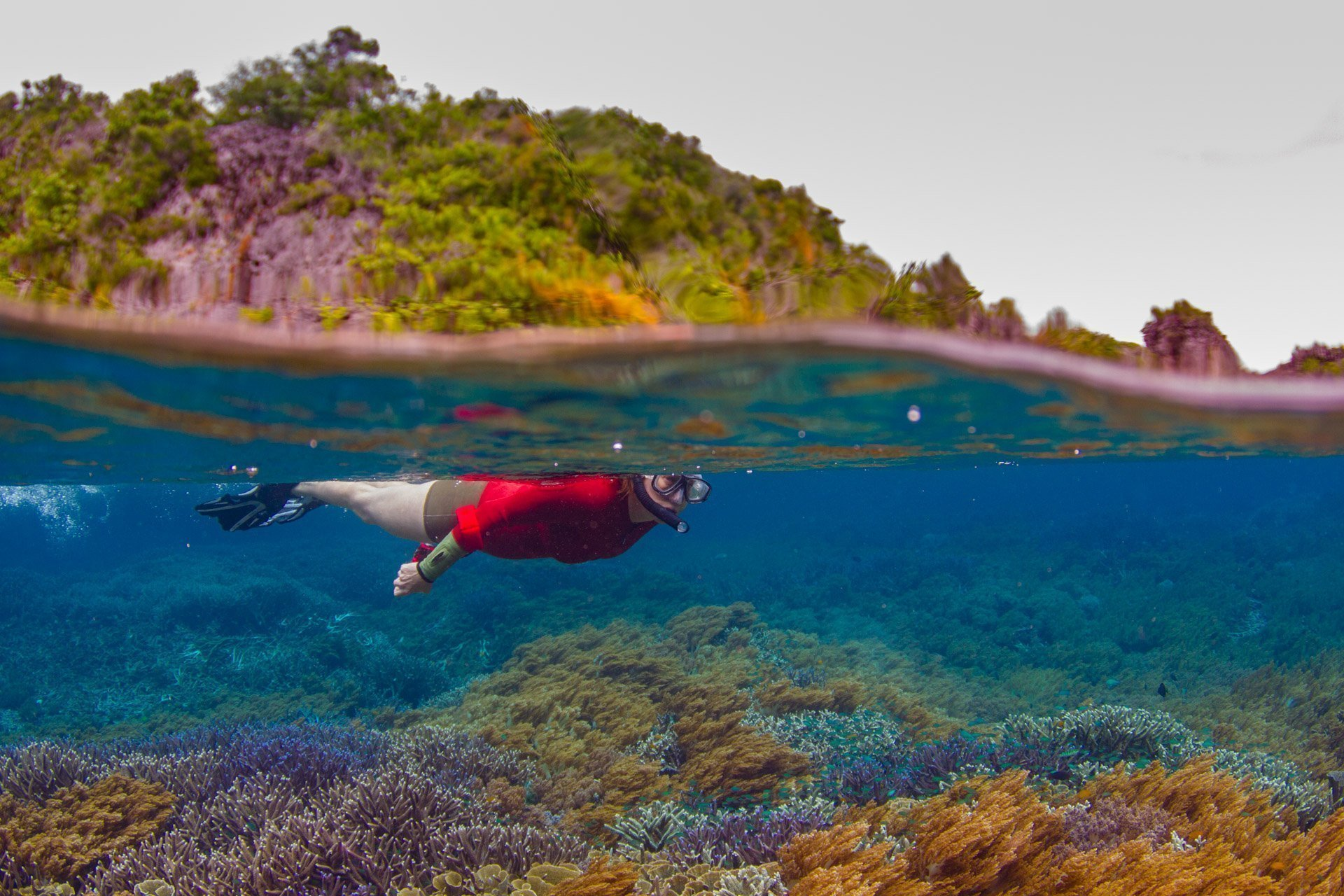 snorkeler on the surface with islands behind and coral below