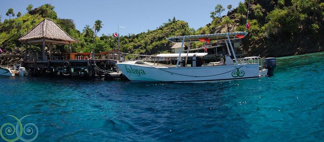 Misool Snorkel Boat
