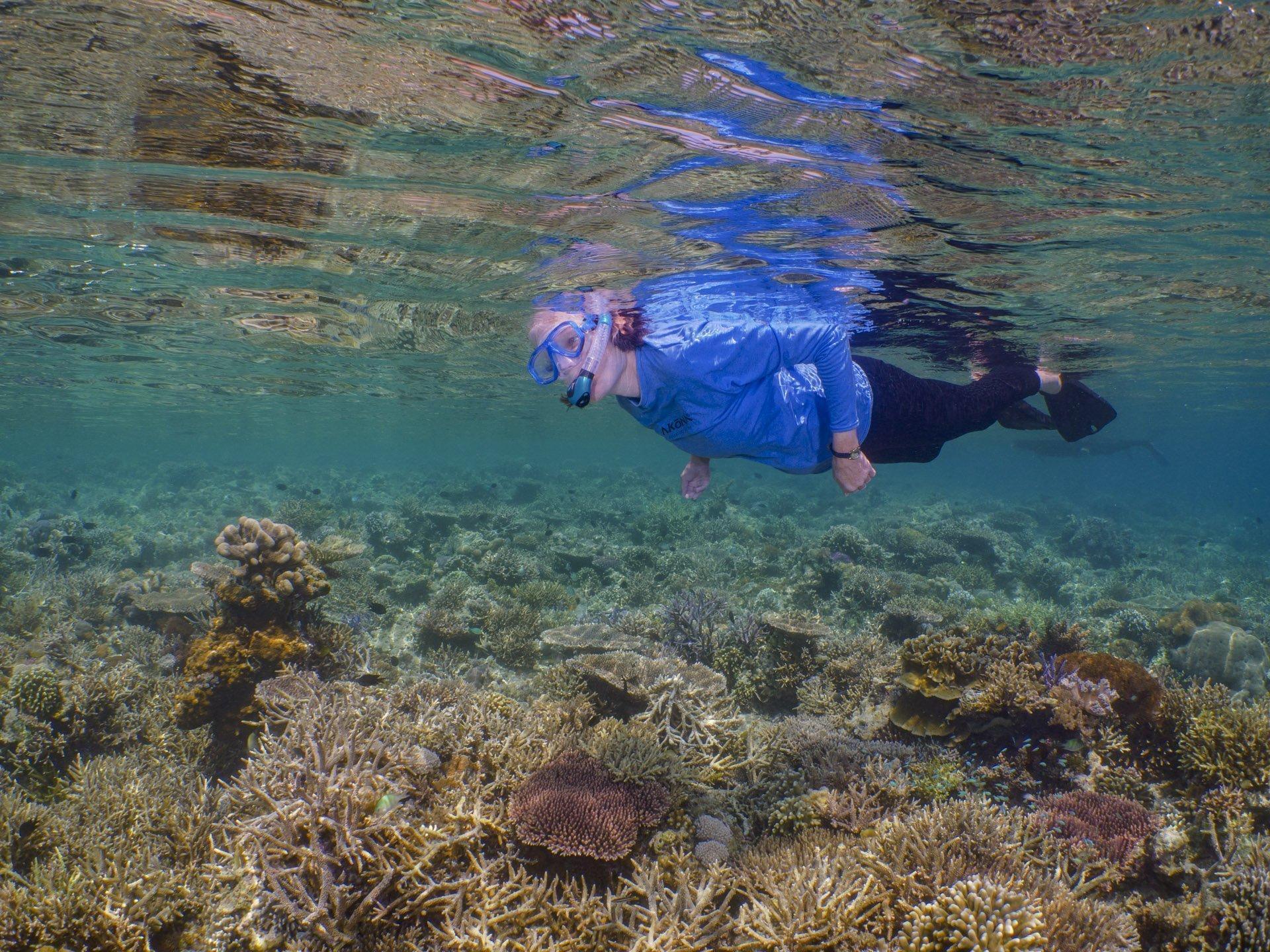 Snorkeler exploring reef in Komodo