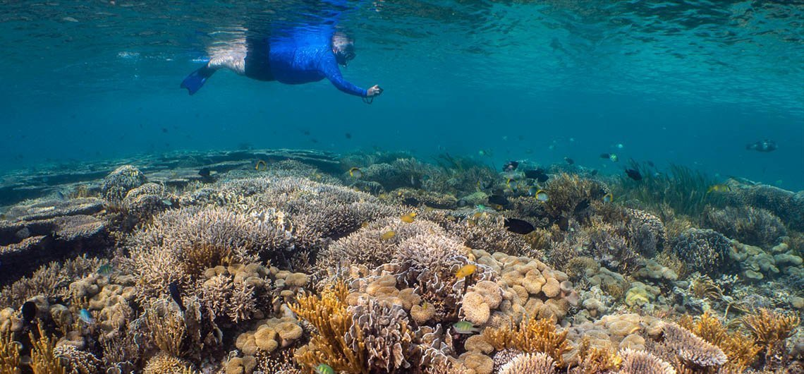 Snorkeler photographing reef in Komodo