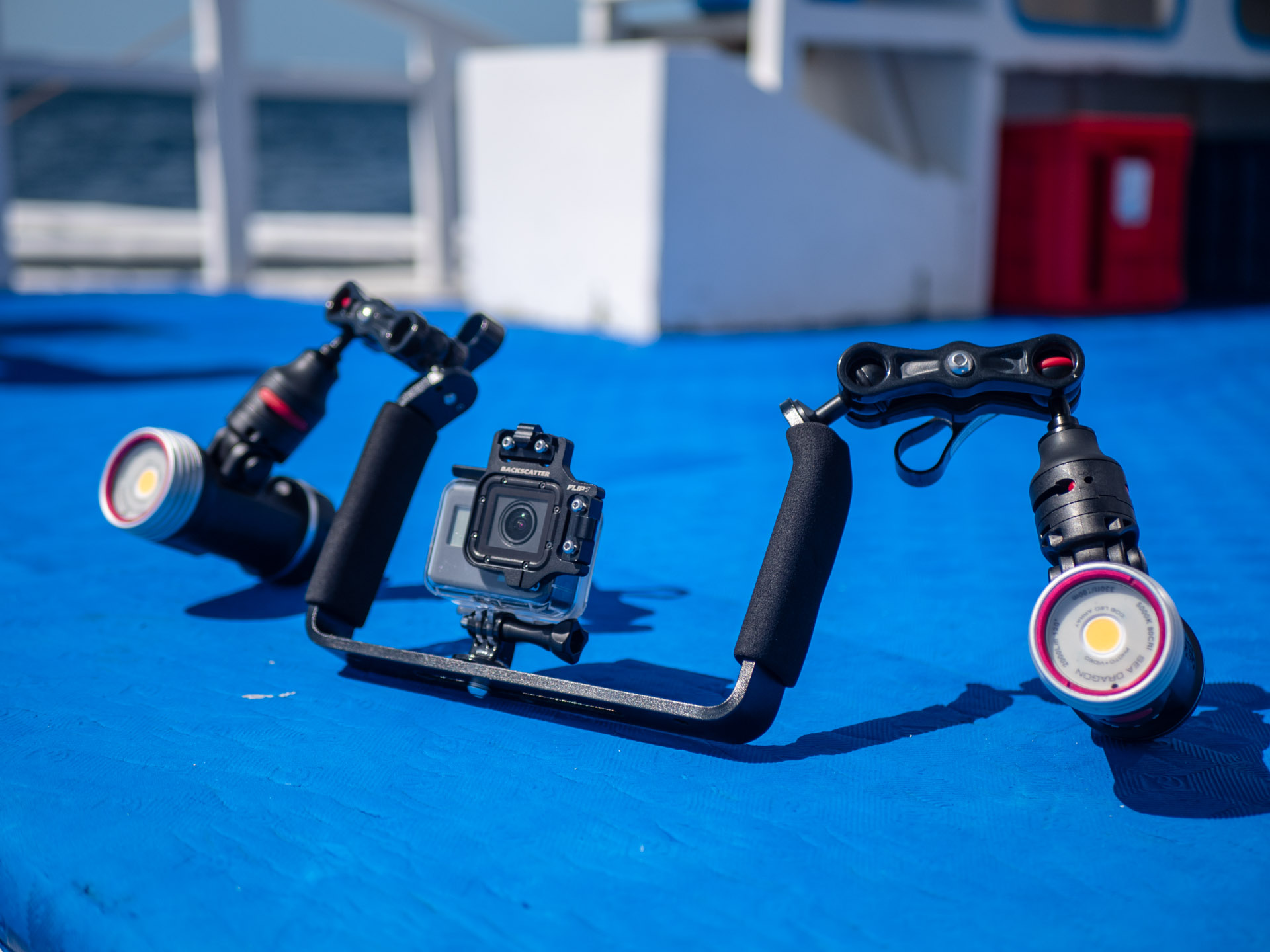 GoPro with dual handle tray and lights