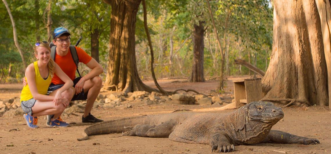 Two guests pose behind a komodo dragon